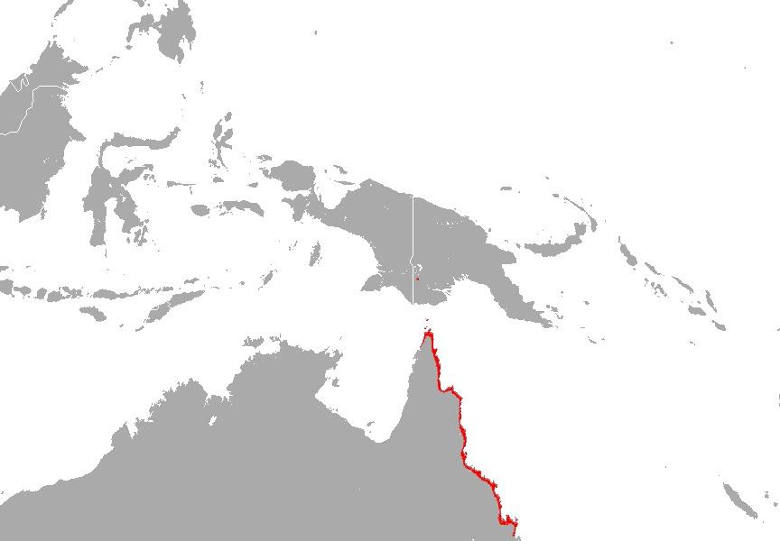 "<span class=""translation_missing"" title=""translation missing: en.medium.untitled.map_image_of, page_name: &lt;i&gt;&lt;i&gt;Taphozous&lt;/i&gt;&lt;/i&gt; (Taphozous) &lt;i&gt;australis&lt;/i&gt; Gould 1854"">Map Image Of</span>"