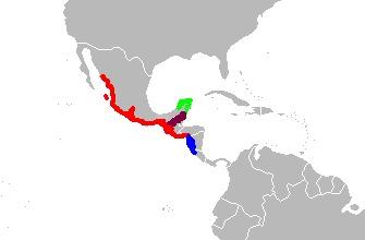 "<span class=""translation_missing"" title=""translation missing: en.medium.untitled.map_image_of, page_name: Moccasins"">Map Image Of</span>"