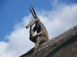 Image of Aardvark