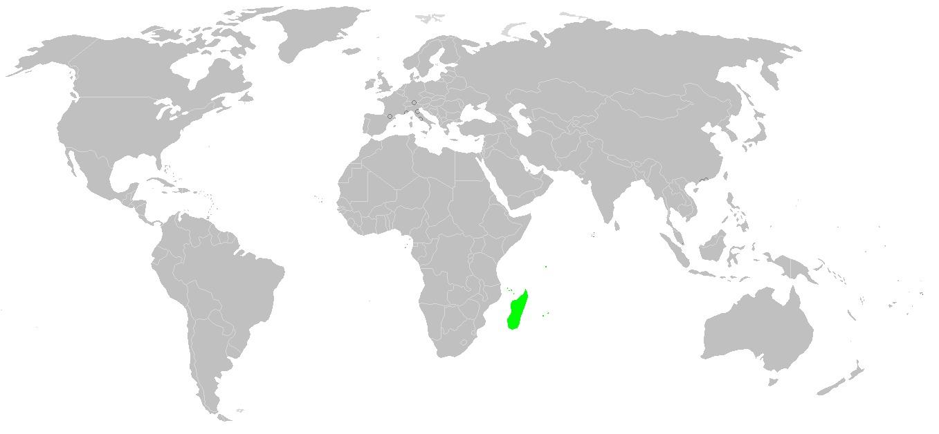"""<span class=""""translation_missing"""" title=""""translation missing: en.medium.untitled.map_image_of, page_name: &lt;i&gt;Nephilengys livida&lt;/i&gt;"""">Map Image Of</span>"""