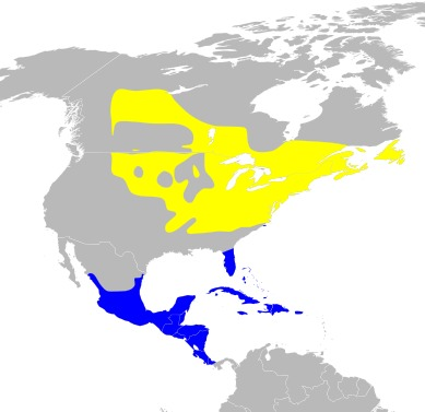 "<span class=""translation_missing"" title=""translation missing: en.medium.untitled.map_image_of, page_name: Seiurus Swainson 1827"">Map Image Of</span>"