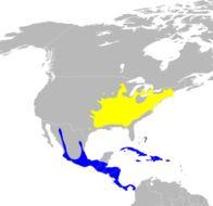 Map of <i>Seiurus motacilla</i>