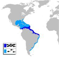 "<span class=""translation_missing"" title=""translation missing: en.medium.untitled.map_image_of, page_name: Annafoke"">Map Image Of</span>"