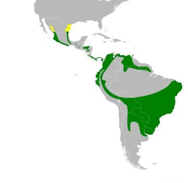Map of Parula