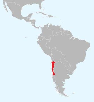 """<span class=""""translation_missing"""" title=""""translation missing: en.medium.untitled.map_image_of, page_name: &lt;i&gt;Callopistes maculatus&lt;/i&gt; Gravenhorst 1838"""">Map Image Of</span>"""