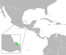 "<span class=""translation_missing"" title=""translation missing: en.medium.untitled.map_image_of, page_name: &lt;i&gt;Bufo cavifrons&lt;/i&gt;"">Map Image Of</span>"