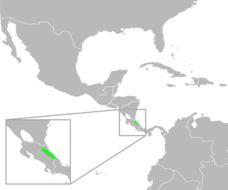 "<span class=""translation_missing"" title=""translation missing: en.medium.untitled.map_image_of, page_name: Dark Green Toad"">Map Image Of</span>"