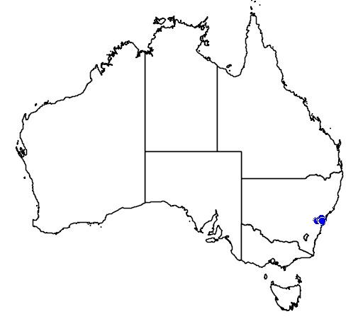 Map of Meridolum