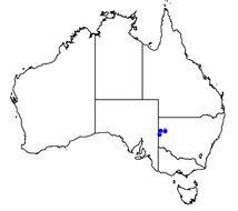 Map of <i>Pleuroxia hinsbyi</i> (Gude 1916)