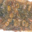 Image of Classical swine fever virus