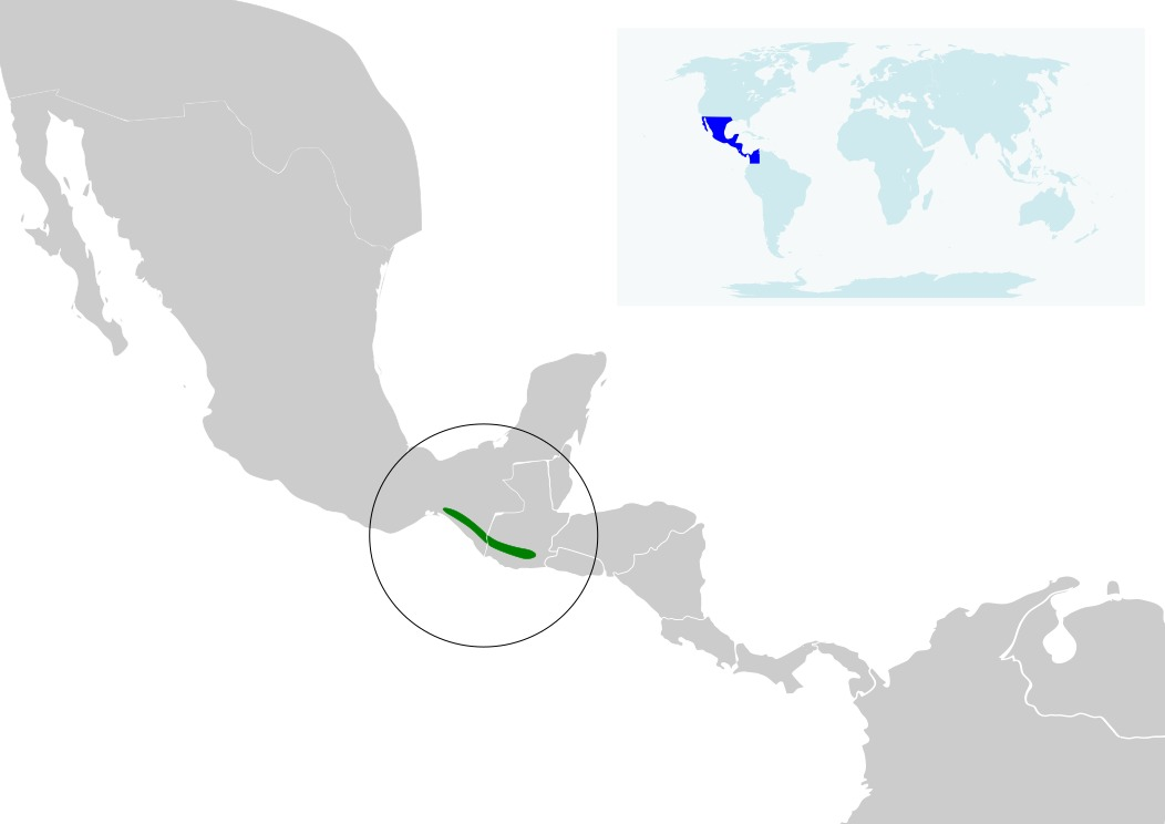 Map of Rufous sabrewing