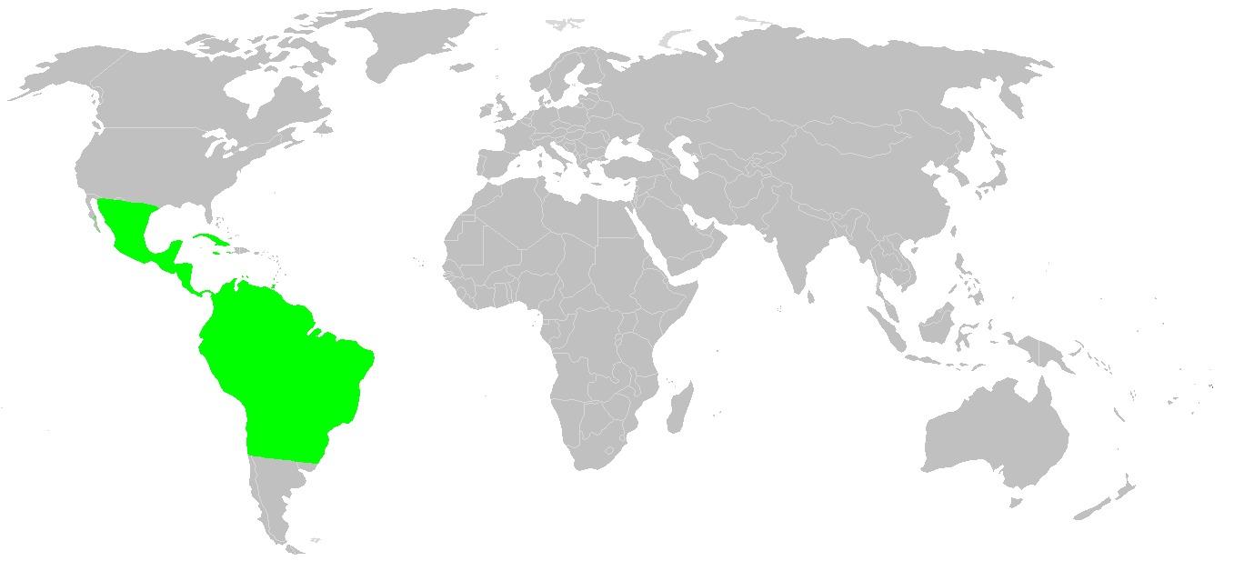 """<span class=""""translation_missing"""" title=""""translation missing: en.medium.untitled.map_image_of, page_name: &lt;i&gt;Agrius cingulatus&lt;/i&gt;"""">Map Image Of</span>"""