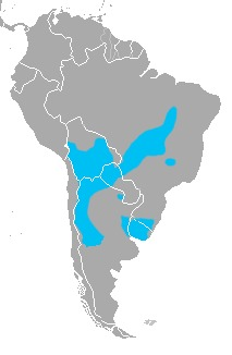 Map of Pantanal Cat