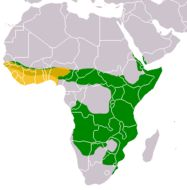 Map of Banded mongooses