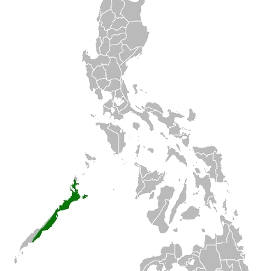 Map of Palawan Forest Turtle