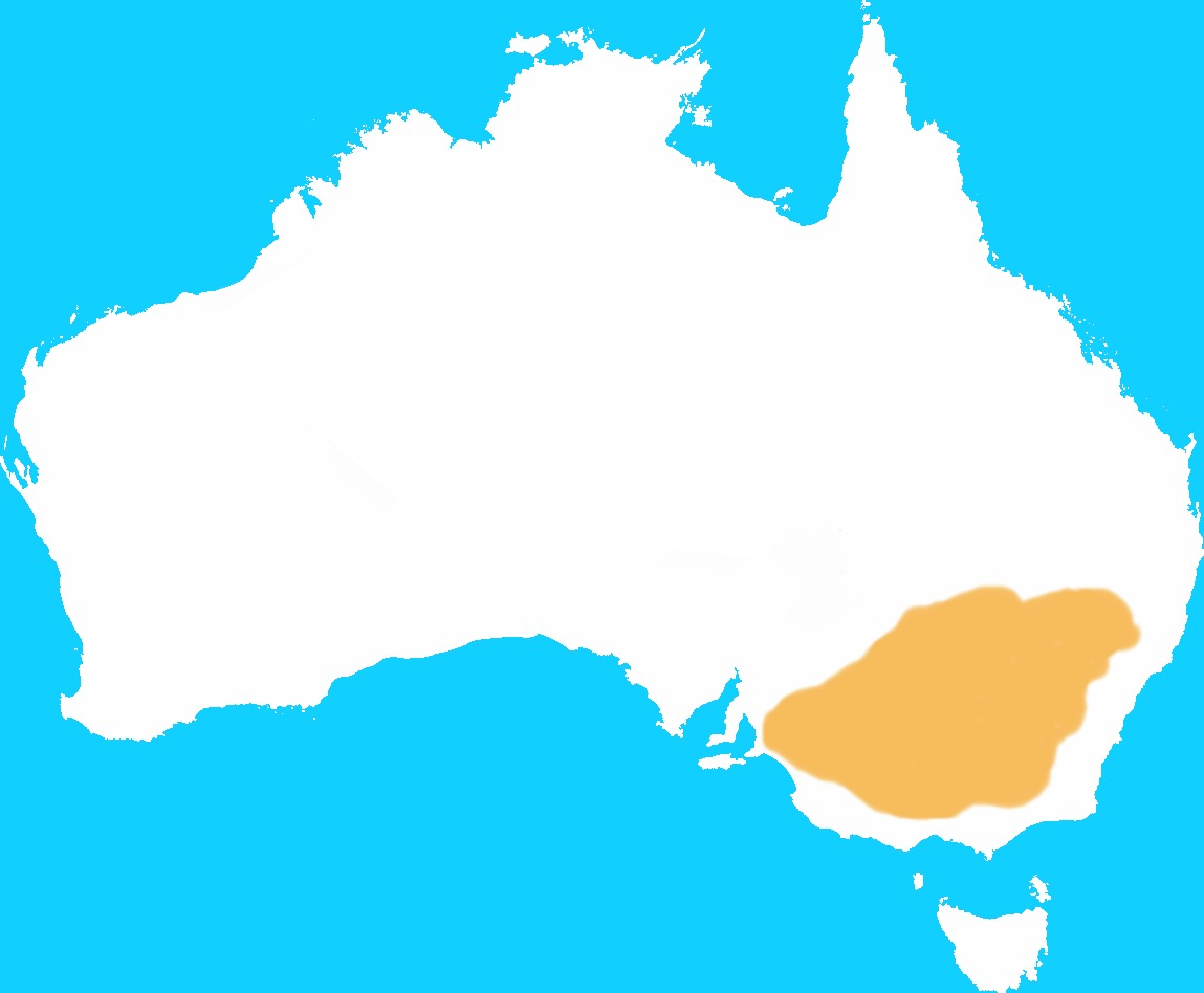 Map of Eastern Hare Wallaby