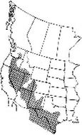 Map of Striped Whipsnake