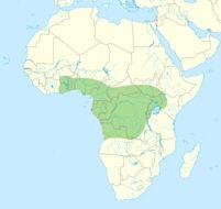 "<span class=""translation_missing"" title=""translation missing: en.medium.untitled.map_image_of, page_name: &lt;i&gt;Dendroaspis jamesoni&lt;/i&gt; (Traill 1843)"">Map Image Of</span>"