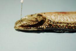 Image of Hatchetfish