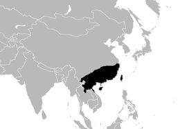 """<span class=""""translation_missing"""" title=""""translation missing: en.medium.untitled.map_image_of, page_name: &lt;i&gt;Naja atra&lt;/i&gt; Cantor 1842"""">Map Image Of</span>"""
