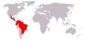 "<span class=""translation_missing"" title=""translation missing: en.medium.untitled.map_image_of, page_name: Jaguarundi"">Map Image Of</span>"