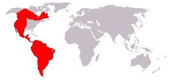 Map of Puma