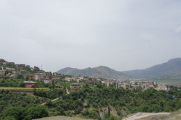 Image of Sason