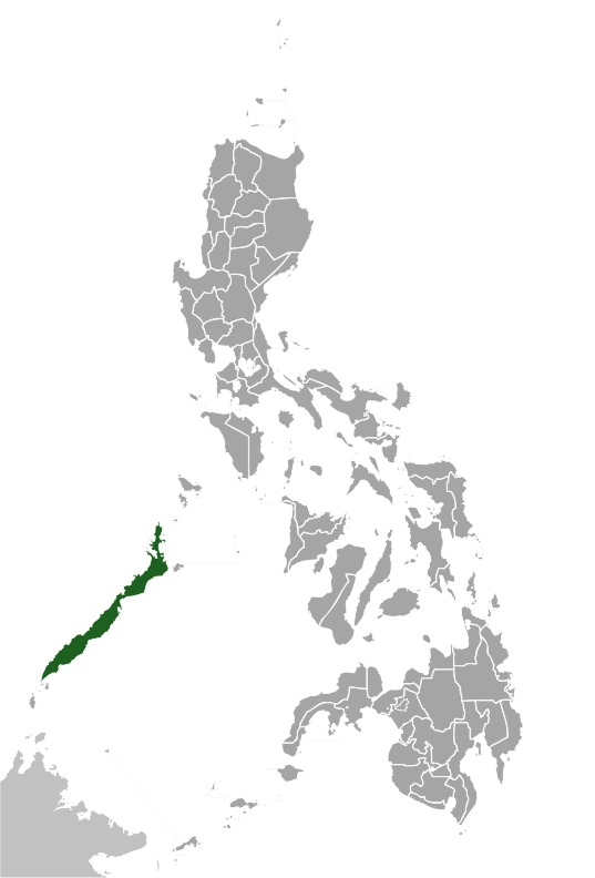 "<span class=""translation_missing"" title=""translation missing: en.medium.untitled.map_image_of, page_name: Palawan peacock pheasant"">Map Image Of</span>"