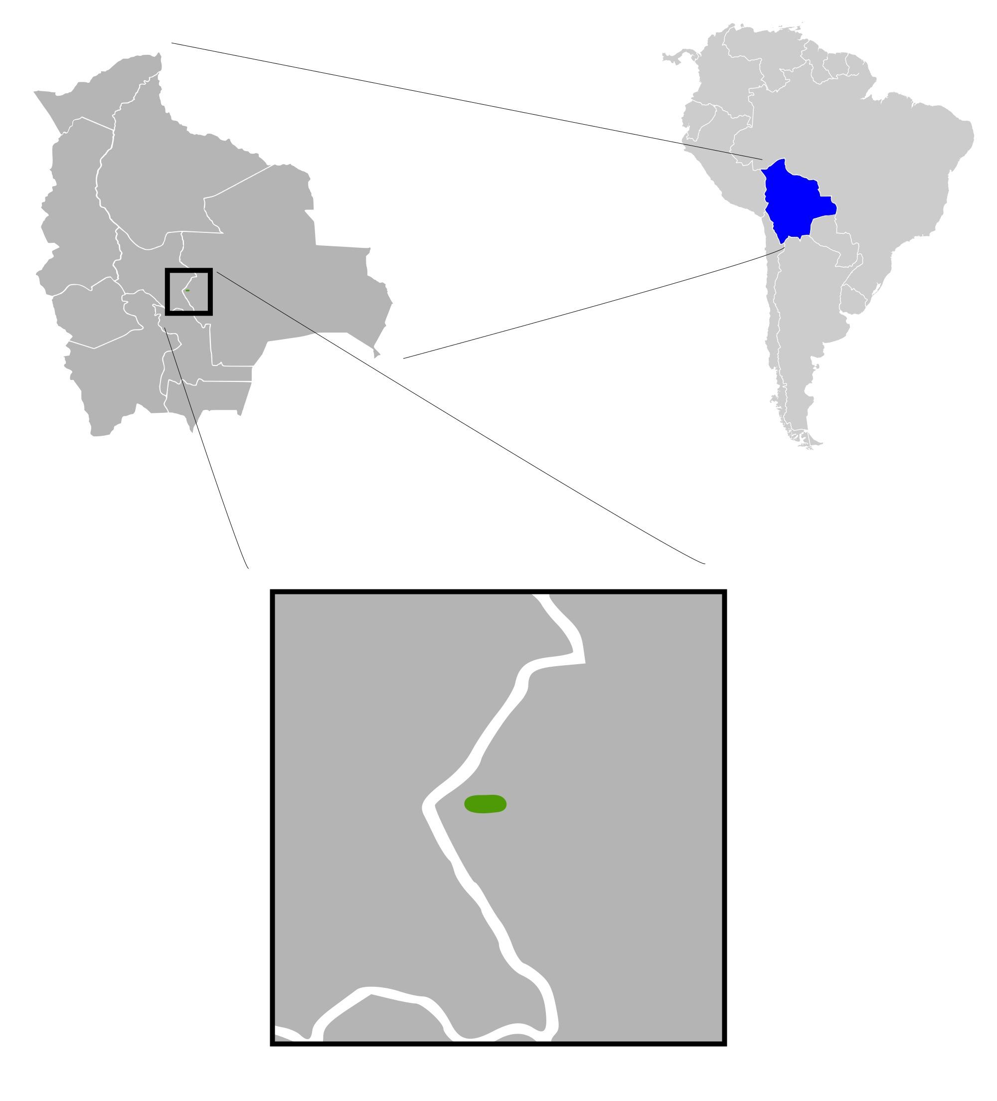 Image of Bolivian Chinchilla Rat