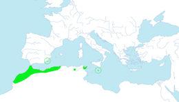 "<span class=""translation_missing"" title=""translation missing: en.medium.untitled.map_image_of, page_name: arar tree"">Map Image Of</span>"