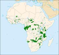 "<span class=""translation_missing"" title=""translation missing: en.medium.untitled.map_image_of, page_name: elephant"">Map Image Of</span>"