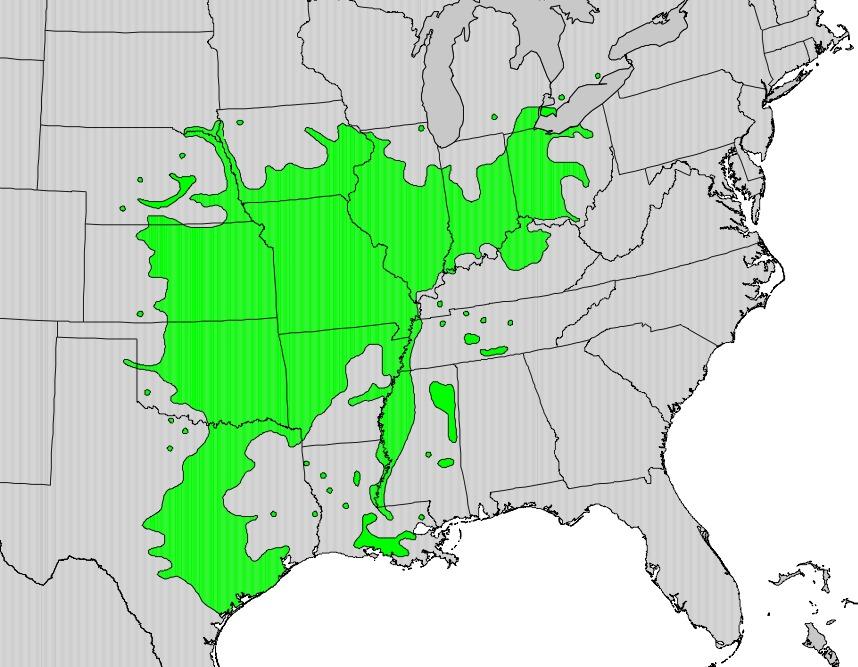 "<span class=""translation_missing"" title=""translation missing: en.medium.untitled.map_image_of, page_name: roughleaf dogwood"">Map Image Of</span>"