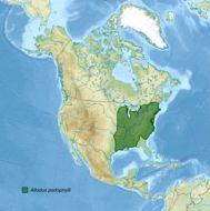 Map of <i>Allodus podophylli</i>