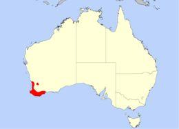 Map of <i>Drosera pulchella</i> Lehm.