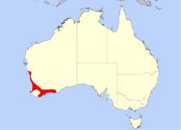 Map of <i>Drosera paleacea</i> DC.