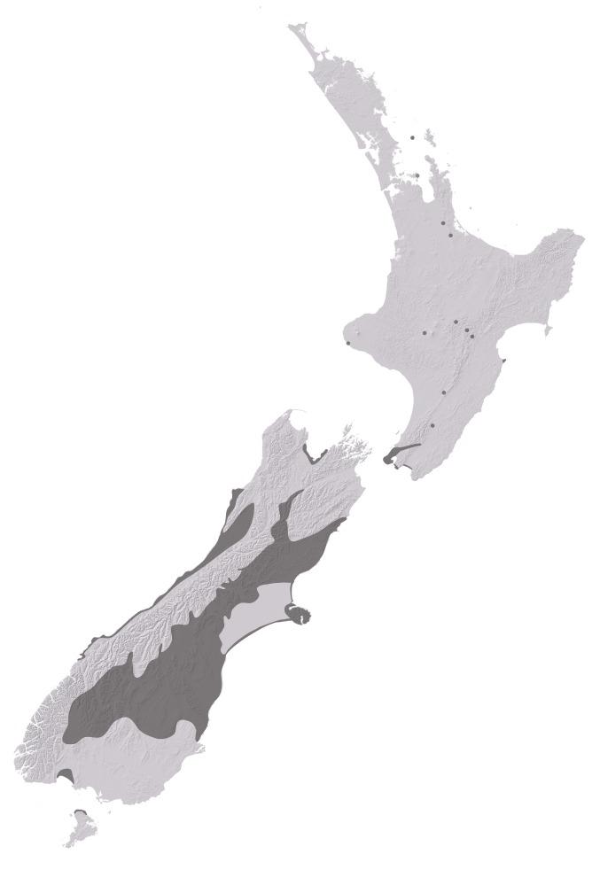 Map of Phaulacridium