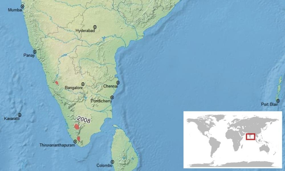 """<span class=""""translation_missing"""" title=""""translation missing: en.medium.untitled.map_image_of, page_name: &lt;i&gt;Duttaphrynus beddomii&lt;/i&gt; (Günther 1876)"""">Map Image Of</span>"""