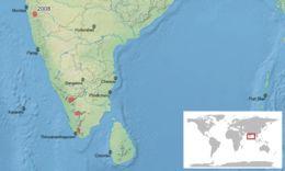 """<span class=""""translation_missing"""" title=""""translation missing: en.medium.untitled.map_image_of, page_name: &lt;i&gt;Duttaphrynus microtympanum&lt;/i&gt; (Boulenger 1882)"""">Map Image Of</span>"""