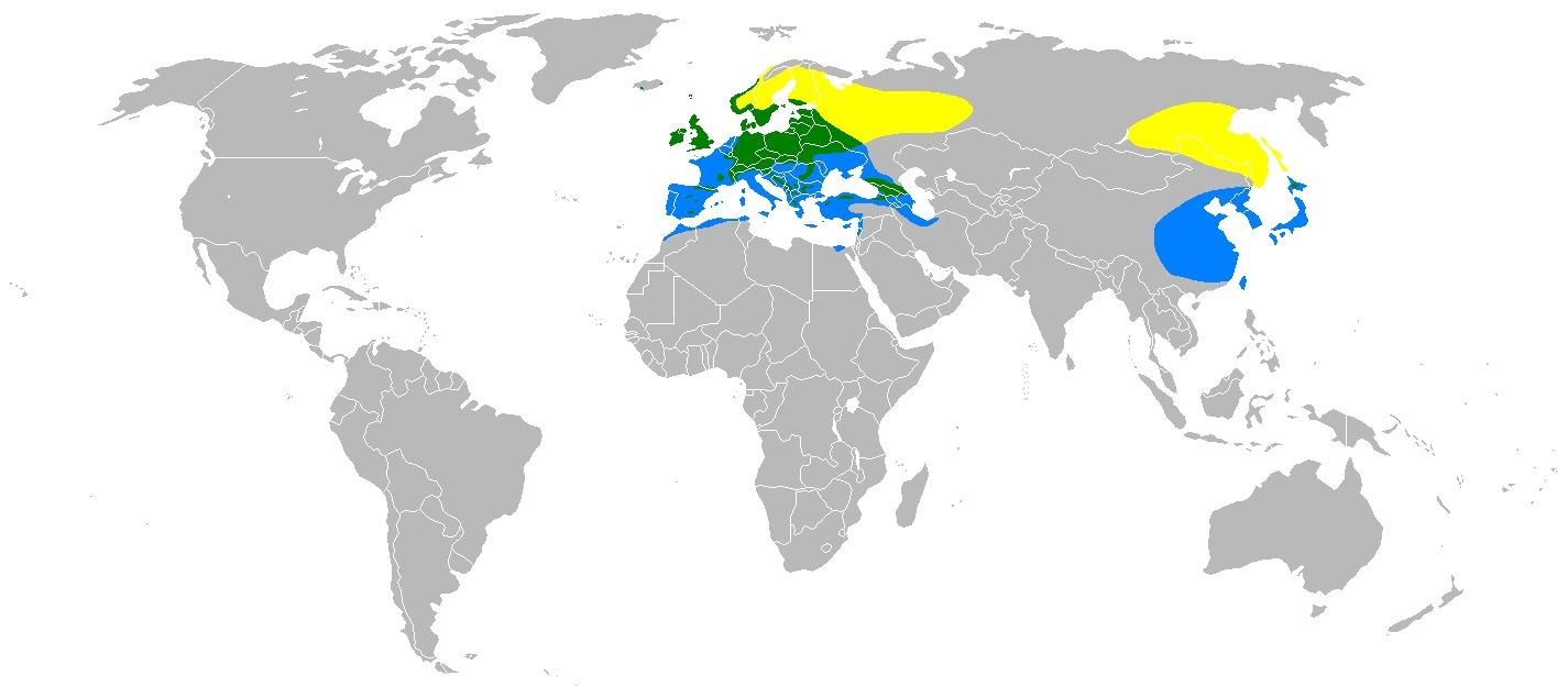 "<span class=""translation_missing"" title=""translation missing: en.medium.untitled.map_image_of, page_name: Eurasian Siskin"">Map Image Of</span>"