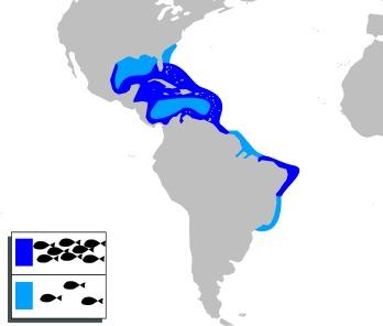 Map of Miss Darlington