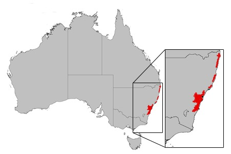 "<span class=""translation_missing"" title=""translation missing: en.medium.untitled.map_image_of, page_name: heath-leaved banksia"">Map Image Of</span>"