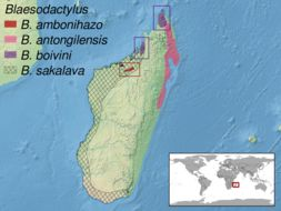 "<span class=""translation_missing"" title=""translation missing: en.medium.untitled.map_image_of, page_name: Blaesodactylus"">Map Image Of</span>"