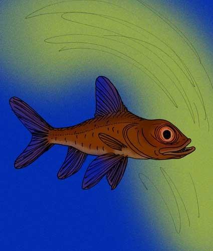 Image of bandfishes