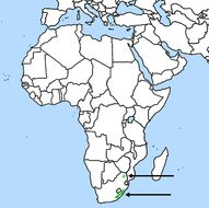 Map of Brown-necked parrot