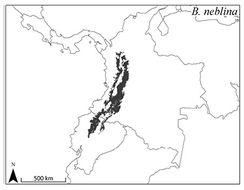 "<span class=""translation_missing"" title=""translation missing: en.medium.untitled.map_image_of, page_name: Olinguito"">Map Image Of</span>"