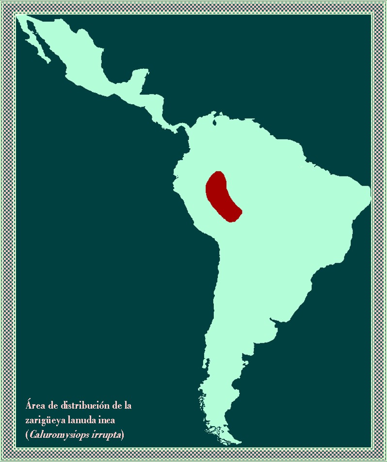 "<span class=""translation_missing"" title=""translation missing: en.medium.untitled.map_image_of, page_name: Black-shouldered Opossum"">Map Image Of</span>"