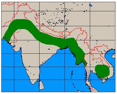 Map of Hog Deer