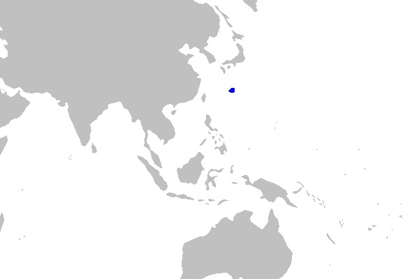 Image of Rasptooth Dogfish
