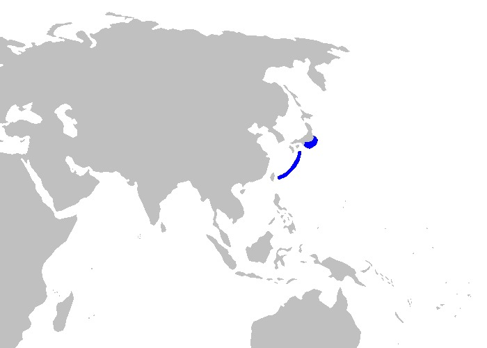 Map of Japanese Catshark