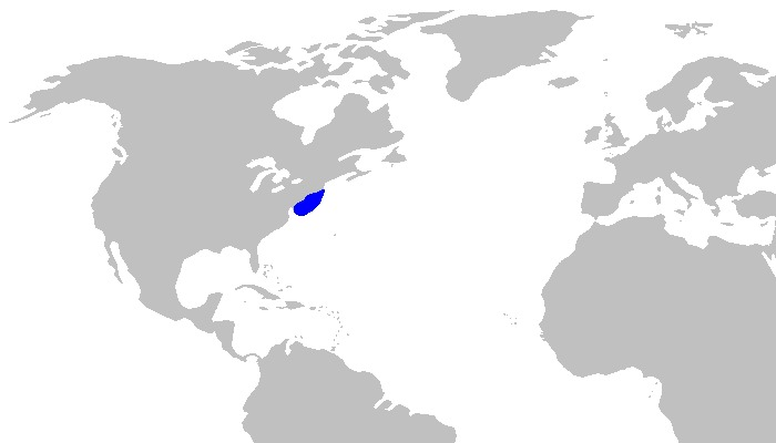 Map of Deepwater Catshark
